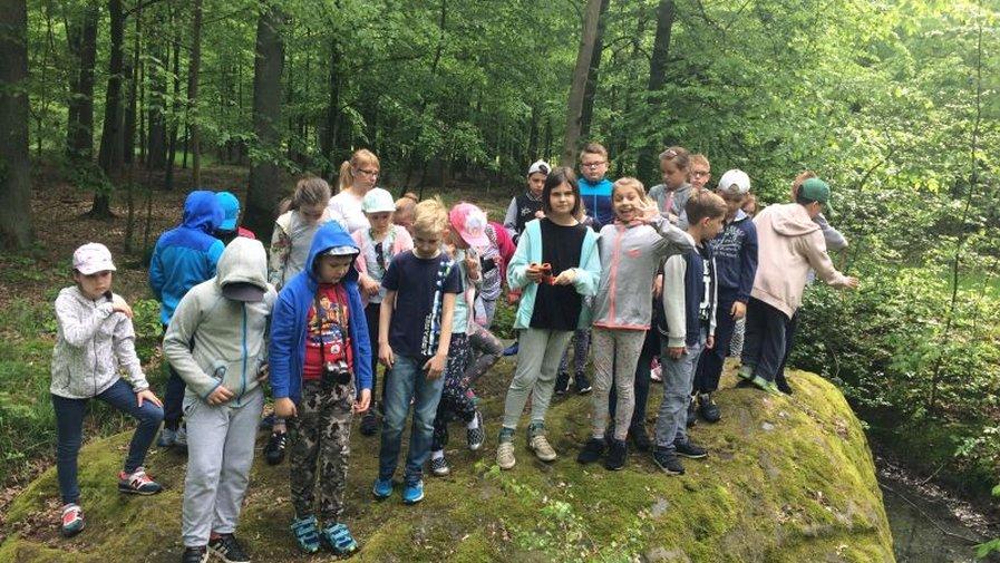Poznajemy zakątki roszkowskiego lasu